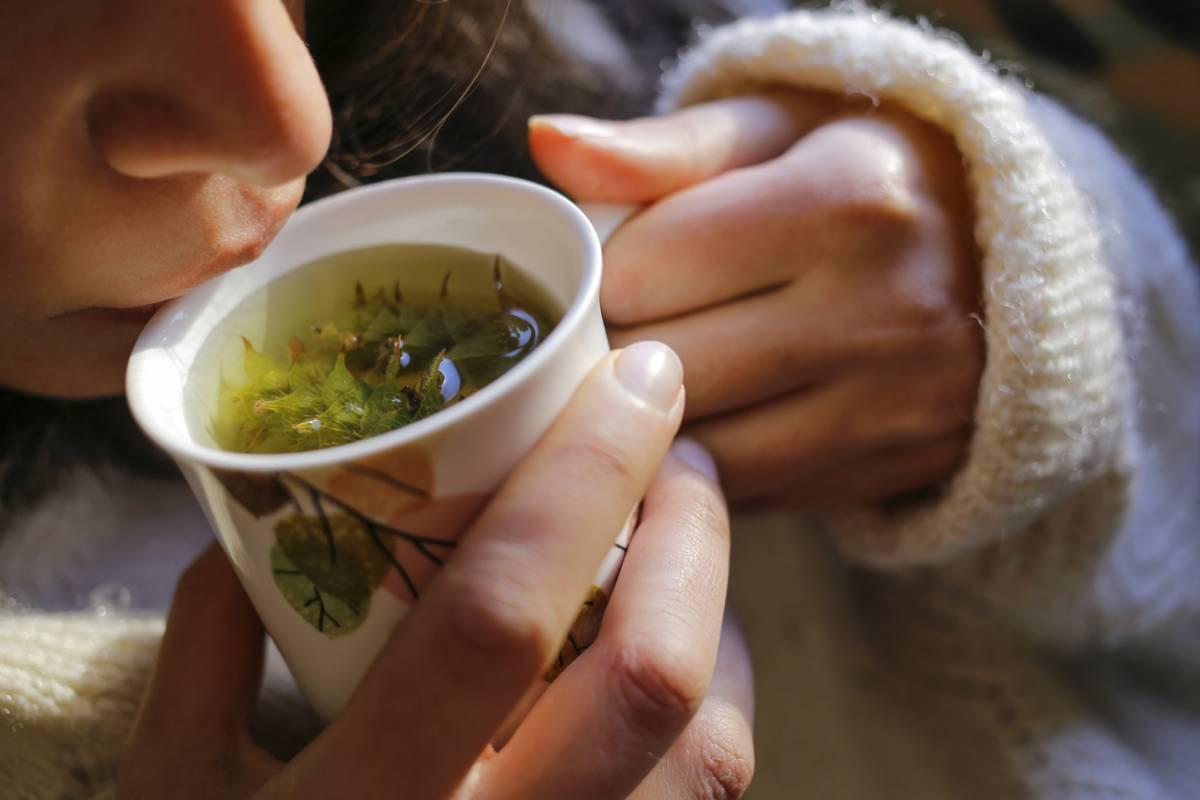 Thé et bien-être : à quelle fréquence faut-il en boire ?