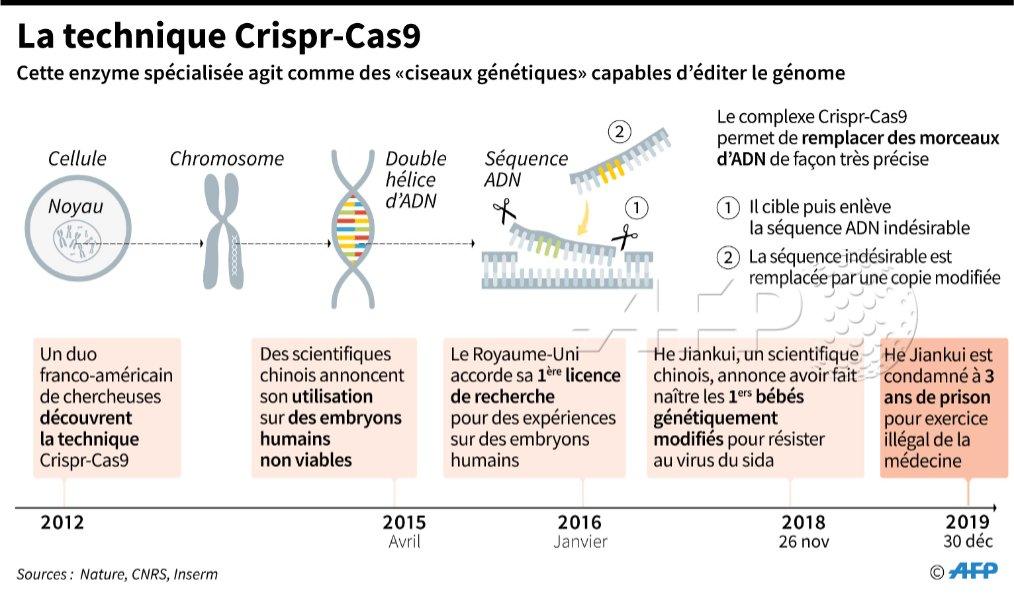 Explication de la technique Crispr-Cas9 selon AFP