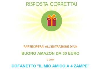 Concorso De Agostini