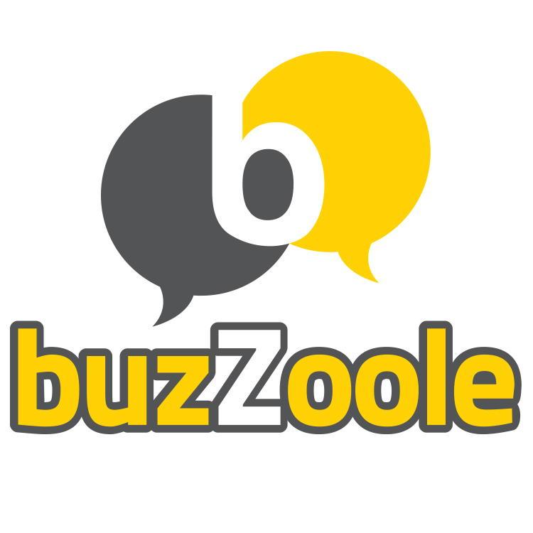 Buzzoole: guadagnare con i social network