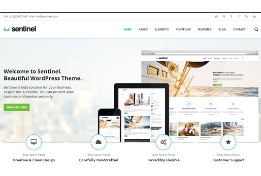 Selling WordPress Theme