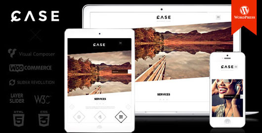 Parallax WordPress Portfolio Themes