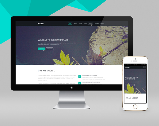 Free HTML Modest Landing Page