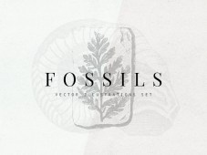 Free Fossils Vector Illustration Set