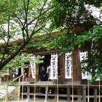 鎌倉・杉本寺◆境内散歩◆