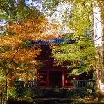 滝尾神社への道~紅葉の日光遠征記2018(その2)~