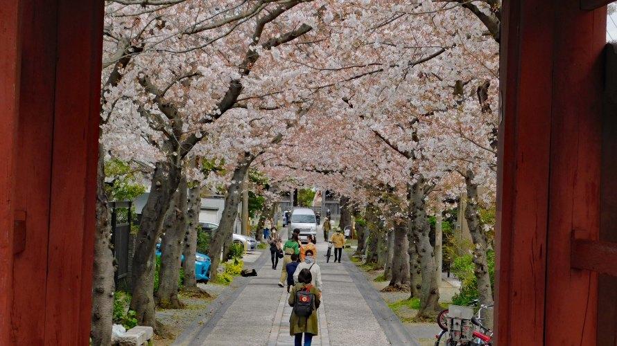 金沢八景・称名寺◆境内散歩(その1)◆赤門・仁王門・光明院等