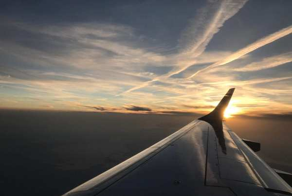 Flying with the sunset on the wing