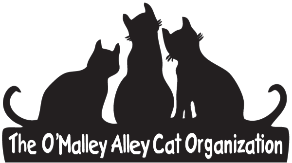 O'malley Alley Cat Rescue