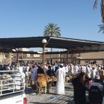 The Nizwa auction.