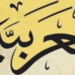 بوربوينت مميز (البحر البسيط) عروض صف 11 – منهاج سلطنة عُمان