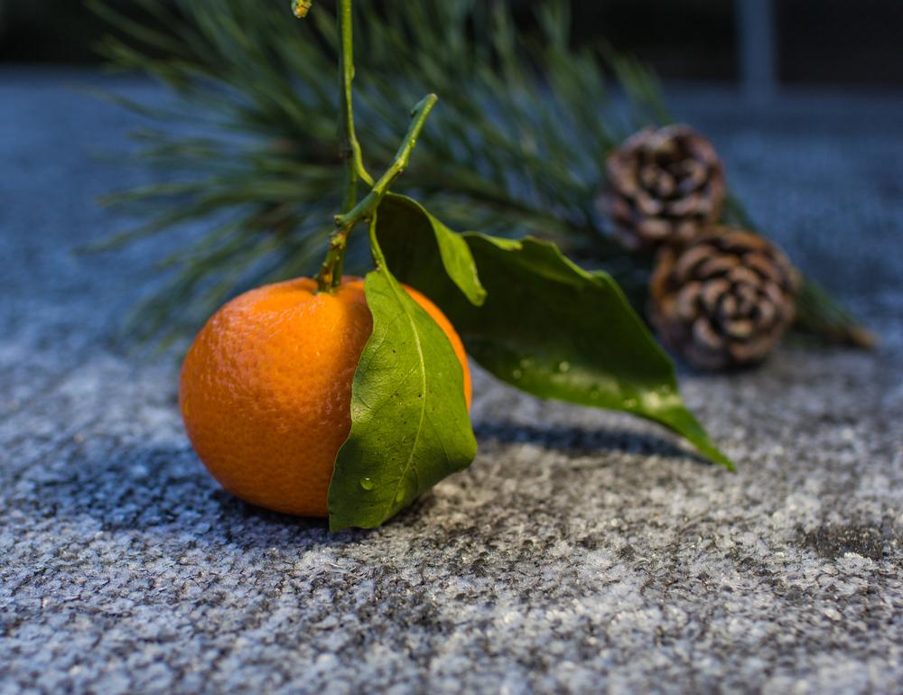 clémentine fruit décembre - fruit de saison