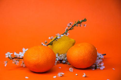 orange et citron fruits d'avril au supermarché Marché Frais