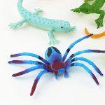العنكبوت الازرق