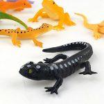 black-lizard