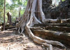Angkor Small Circuit Tour (2)