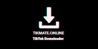 tikmate online tiktok downloader