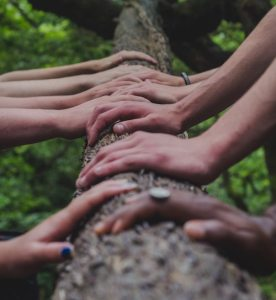 hands laid on a log