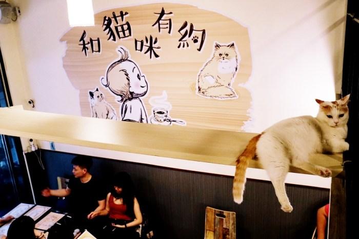 《台北貓咪餐廳》和貓咪有約|不限時吃得飽20隻品種萌貓圍繞,近南京三民站