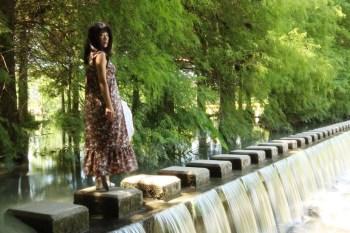 《花蓮景點》雲山水|壽豐必去美拍勝地,夢幻湖落羽松跳石濕地生態園區