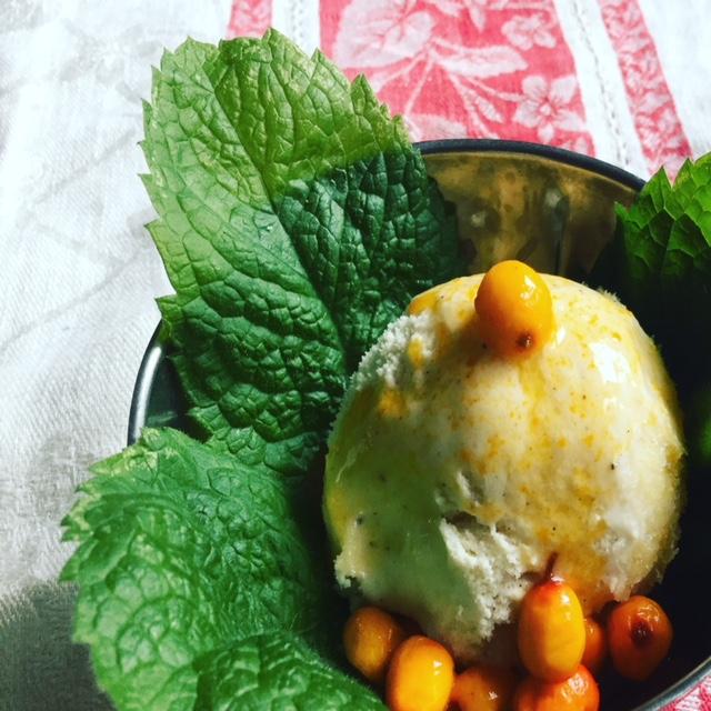 Sea buckthorn couli on homemade ice cream