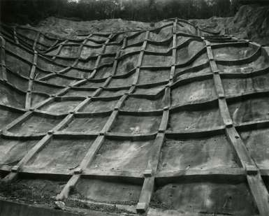 Yamaç güçlendirme ızgaraları (Foto: Soshio Shibata)