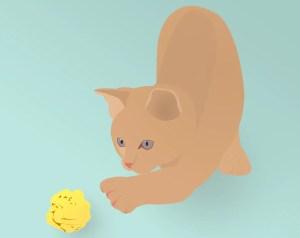 gato-e-post-it