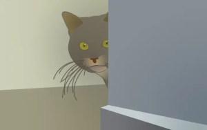 jogo-escondidas-com-gato