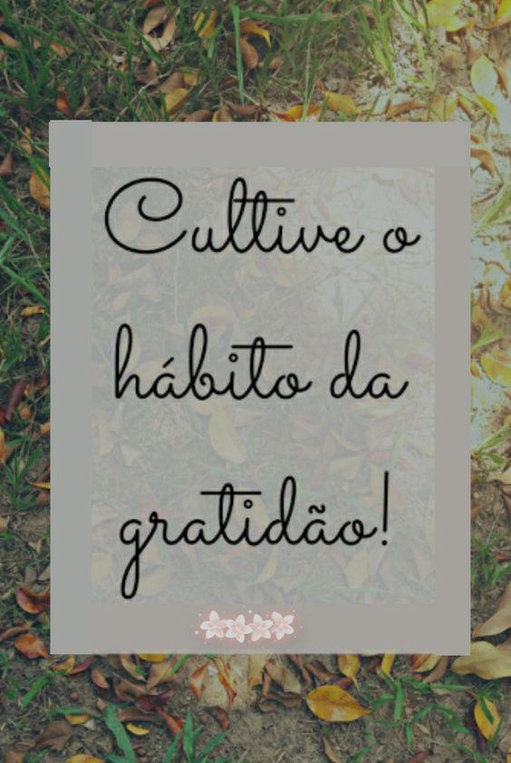 Frases de gratidão com carinho.