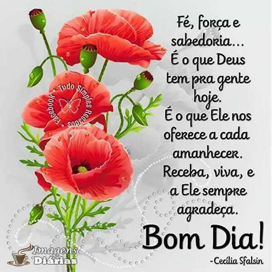 Bom dia com flores e sabedoria