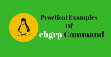 Practical Examples Of chgrp command in linux