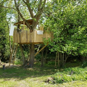 Longshot of wooden treehouse