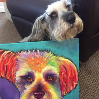 Schnoodle painting