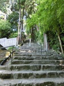 10 長命寺_でもまだ階段