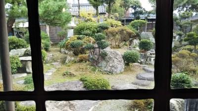 野間清六邸_菊花展