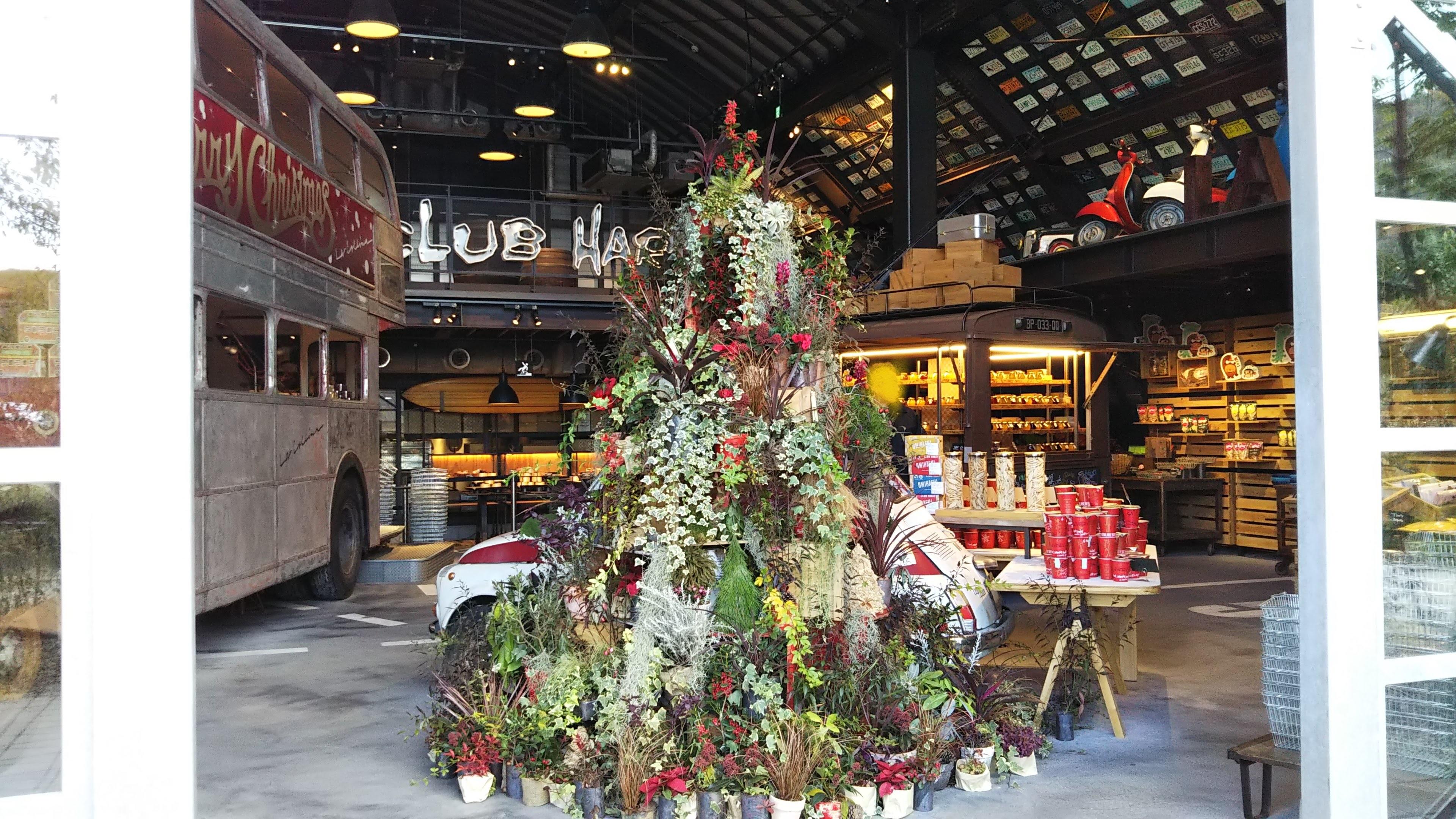 ラコリーナ近江八幡_クリスマスツリー