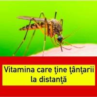Aceasta e vitamina care ţine ţânţarii la distanţă. Suplimentul aduce numai beneficii organismului uman!