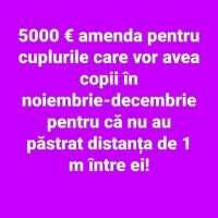 5000 de euro amenda pentru cupluri😂🤣👍