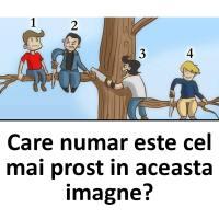 Care numar este cel mai prost in aceasta imagne?