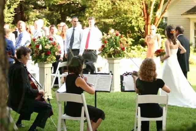 Cena glasbenika za poroko