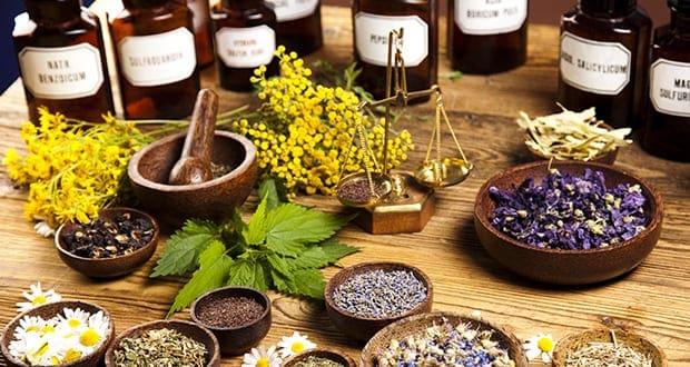 alternativna medicina zeliščarstvo cena cenik