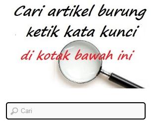 form pencarian artikel omkicau
