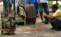 Asyik buat merawat burung pada lomba burung Solo Kota Budaya 2012