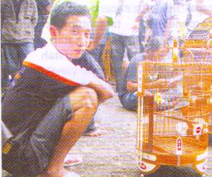 Irul RO – Bali Ndak ada cerita cacat juara