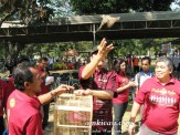 Pelepasan burung penanda pembukaan Lomba Burung Piala Raja 2012