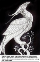 Chakora adalah sejenis ayam hutan yang muncul dalam mitologi Hindu