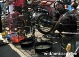 Pasar Petekan Surabaya 4