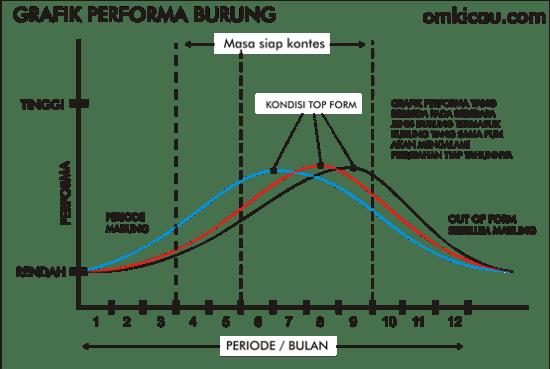 Grafik performa burung dalam siklus mabung tahunan