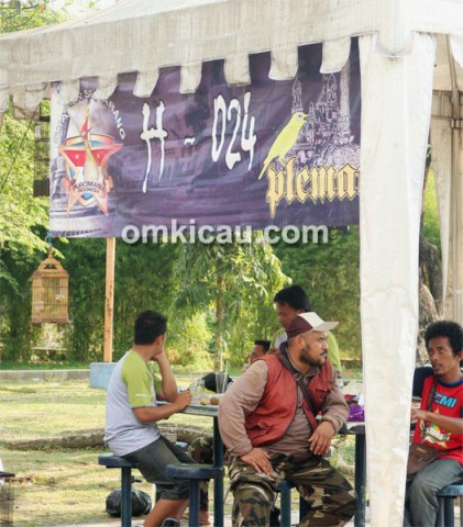 One Stop Pleci Festival