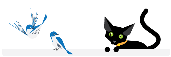 Memelihara burung dan kucing